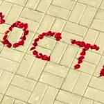 Как и когда извиняться